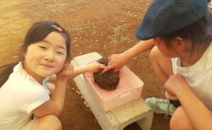 小倉美咲と美咲の姉